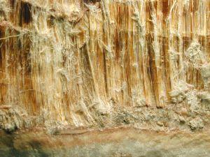 asbestos-119041-m.jpg